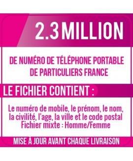 2.3 MILLION DE NUMÉROS DE TÉLÉPHONES PORTABLES DE PARTICULIERS DE FRANCE