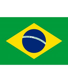 ACHETER BASE DE DONNÉE SMS PROFESSIONNEL BRESIL