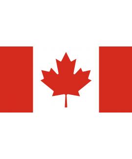 ACHETER BASE DE DONNÉE SMS PROFESSIONNEL CANADA