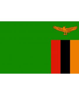 ACHETER BASE DE DONNÉE SMS PROFESSIONNEL ZAMBIE