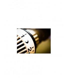 Acheter base de donnée SMS Professionnels Département 40 Landes